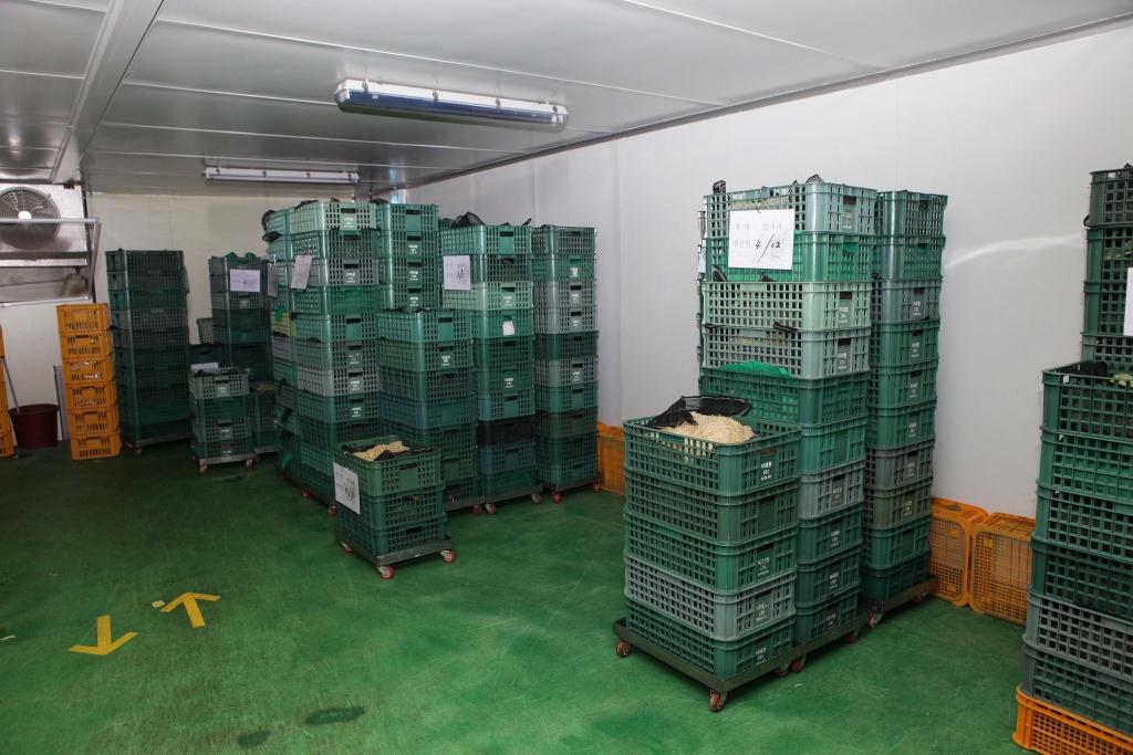 pretreatment-vegetables-processing